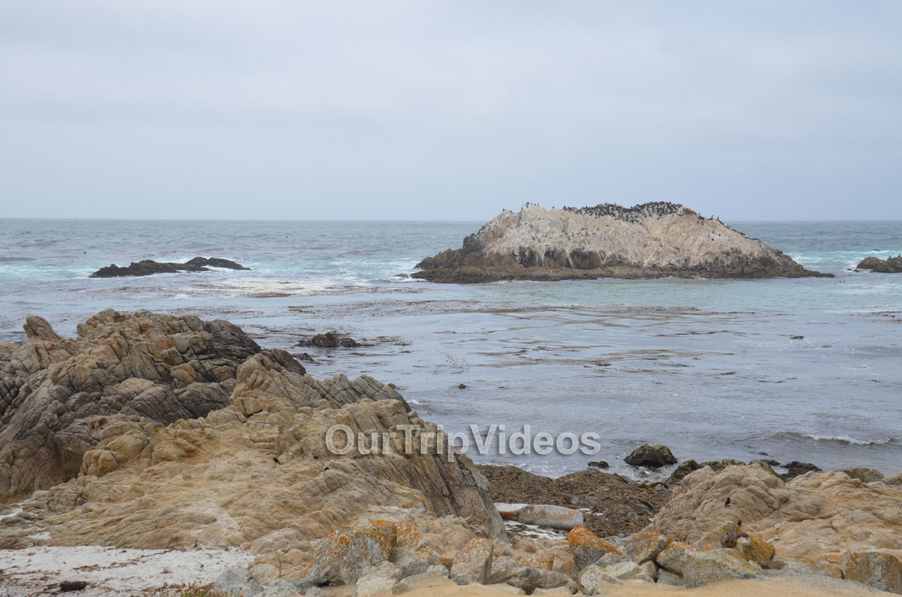 17-Mile Drive, Pebble Beach, CA, USA - Picture 2 of 25