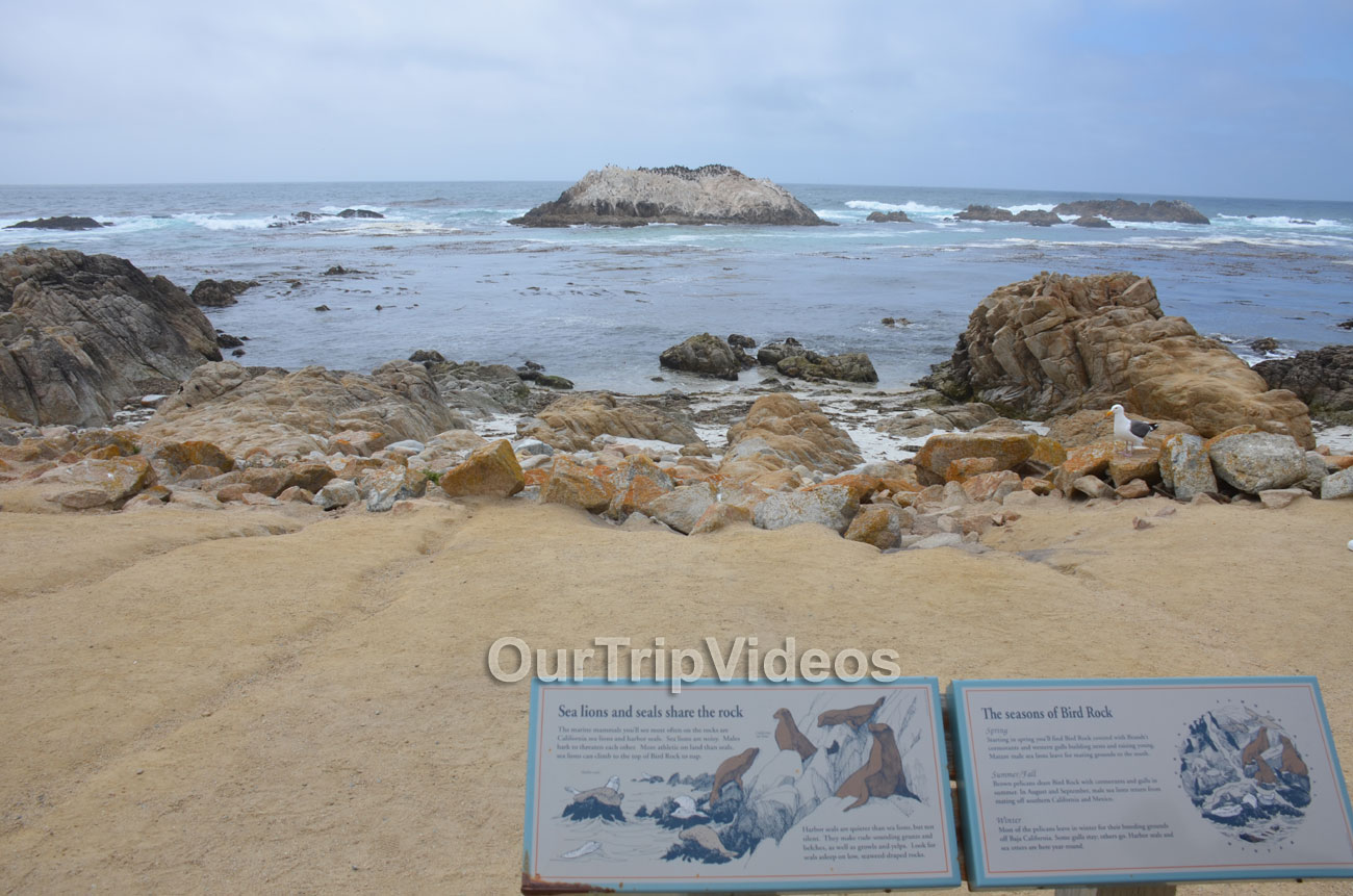 17-Mile Drive, Pebble Beach, CA, USA - Picture 7 of 25