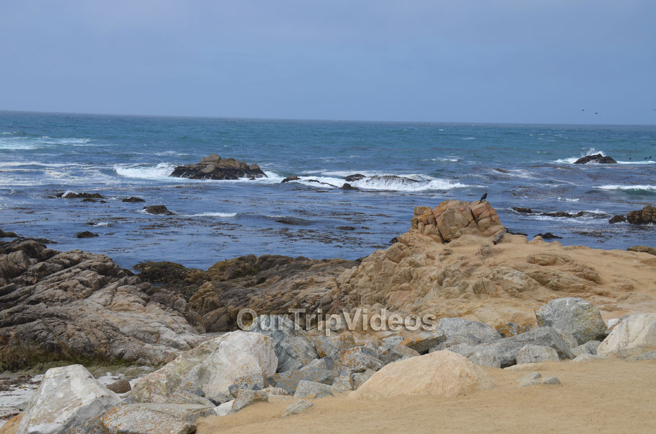 17-Mile Drive, Pebble Beach, CA, USA - Picture 10 of 25