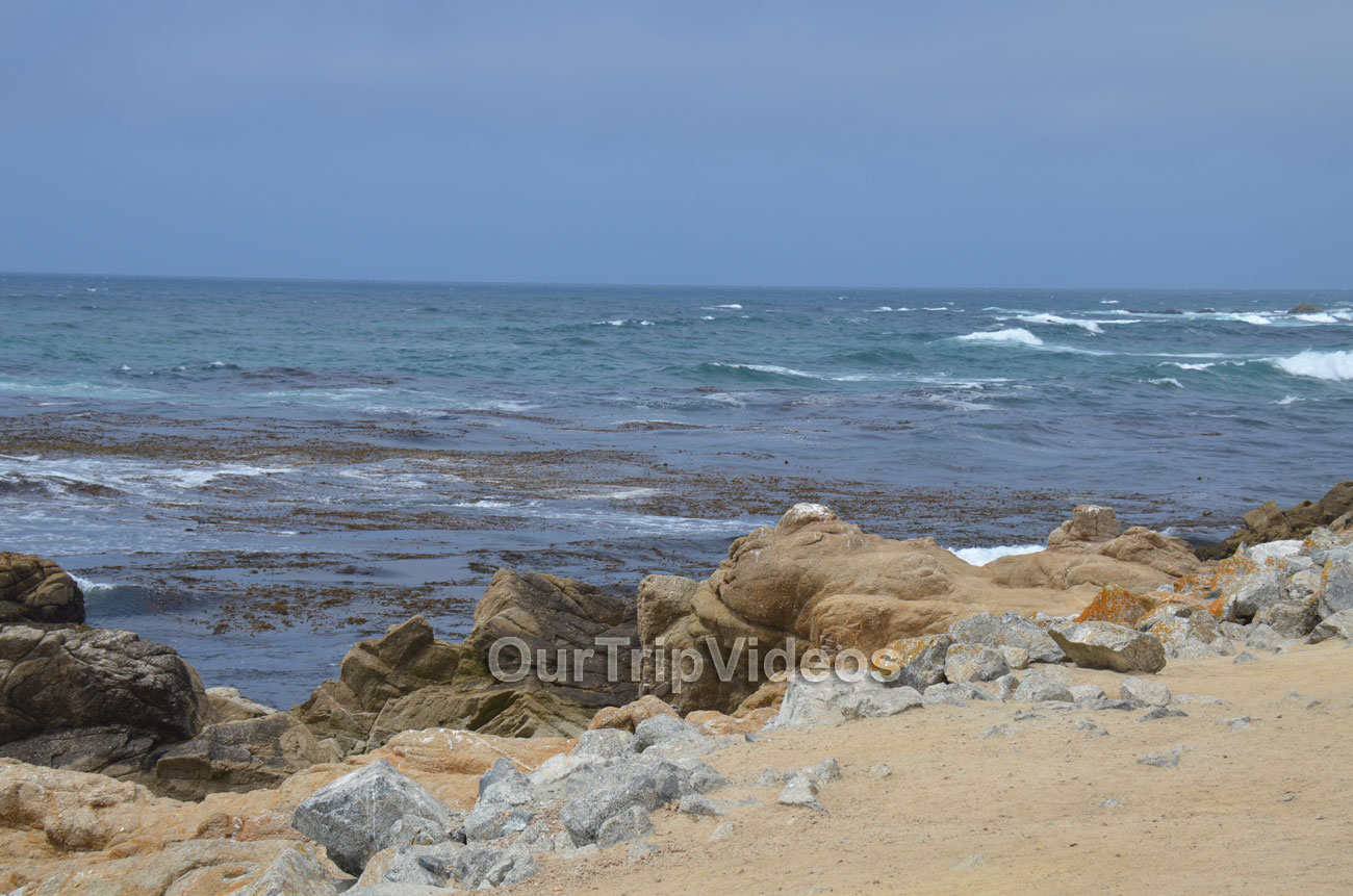 17-Mile Drive, Pebble Beach, CA, USA - Picture 14 of 25