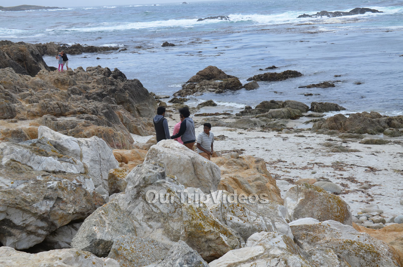 17-Mile Drive, Pebble Beach, CA, USA - Picture 15 of 25