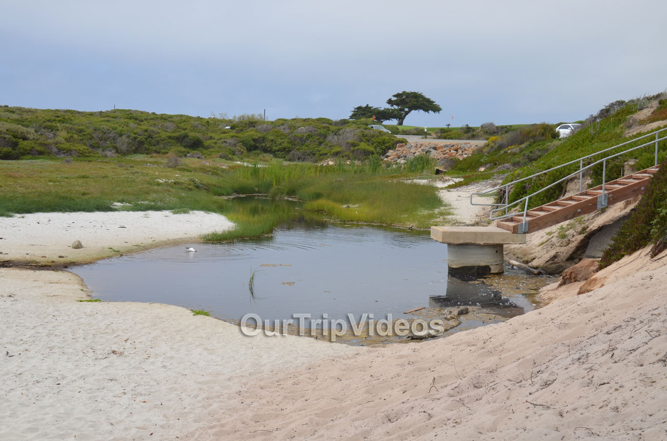 17-Mile Drive, Pebble Beach, CA, USA - Picture 20 of 25