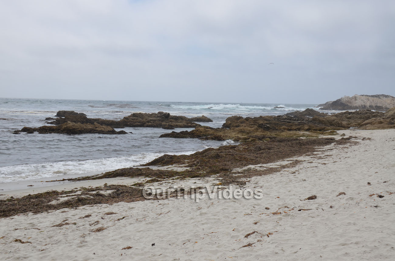 17-Mile Drive, Pebble Beach, CA, USA - Picture 21 of 25
