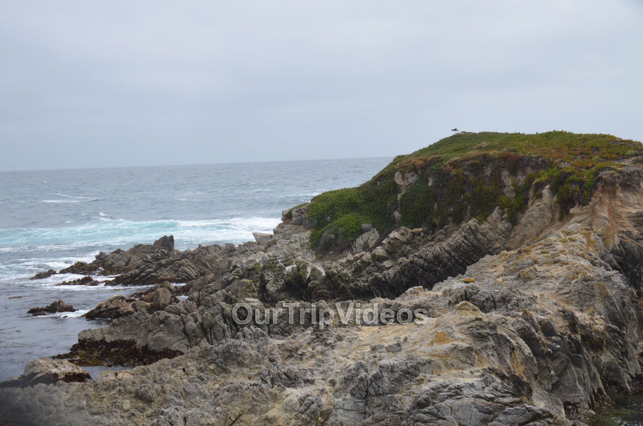 17-Mile Drive, Pebble Beach, CA, USA - Picture 27 of 50