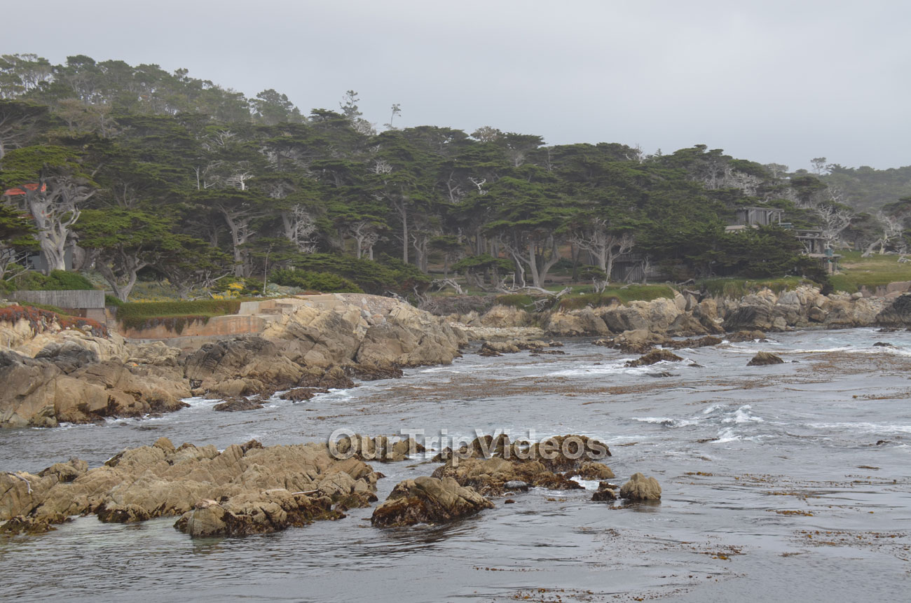 17-Mile Drive, Pebble Beach, CA, USA - Picture 32 of 50