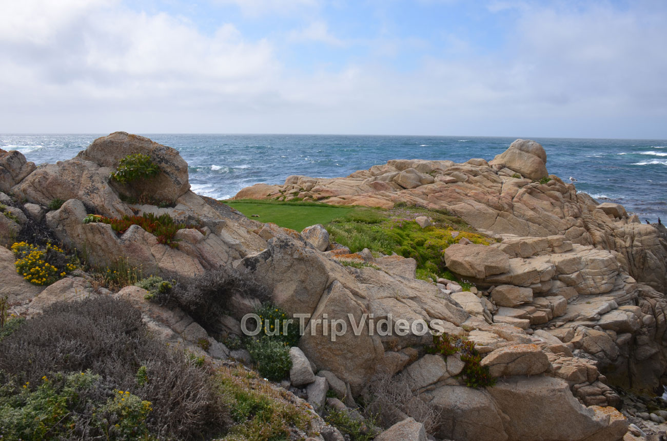 17-Mile Drive, Pebble Beach, CA, USA - Picture 38 of 50