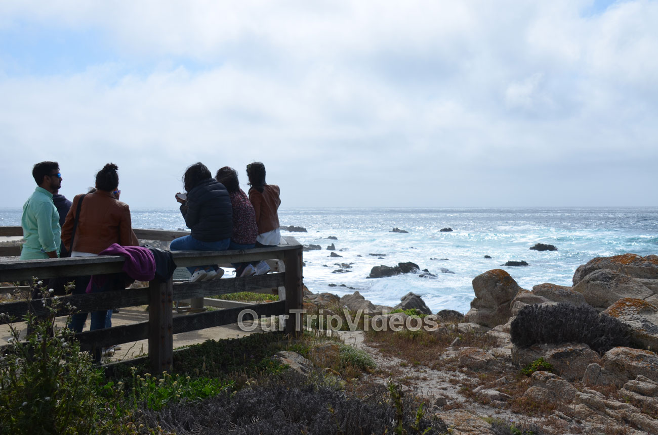 17-Mile Drive, Pebble Beach, CA, USA - Picture 39 of 50