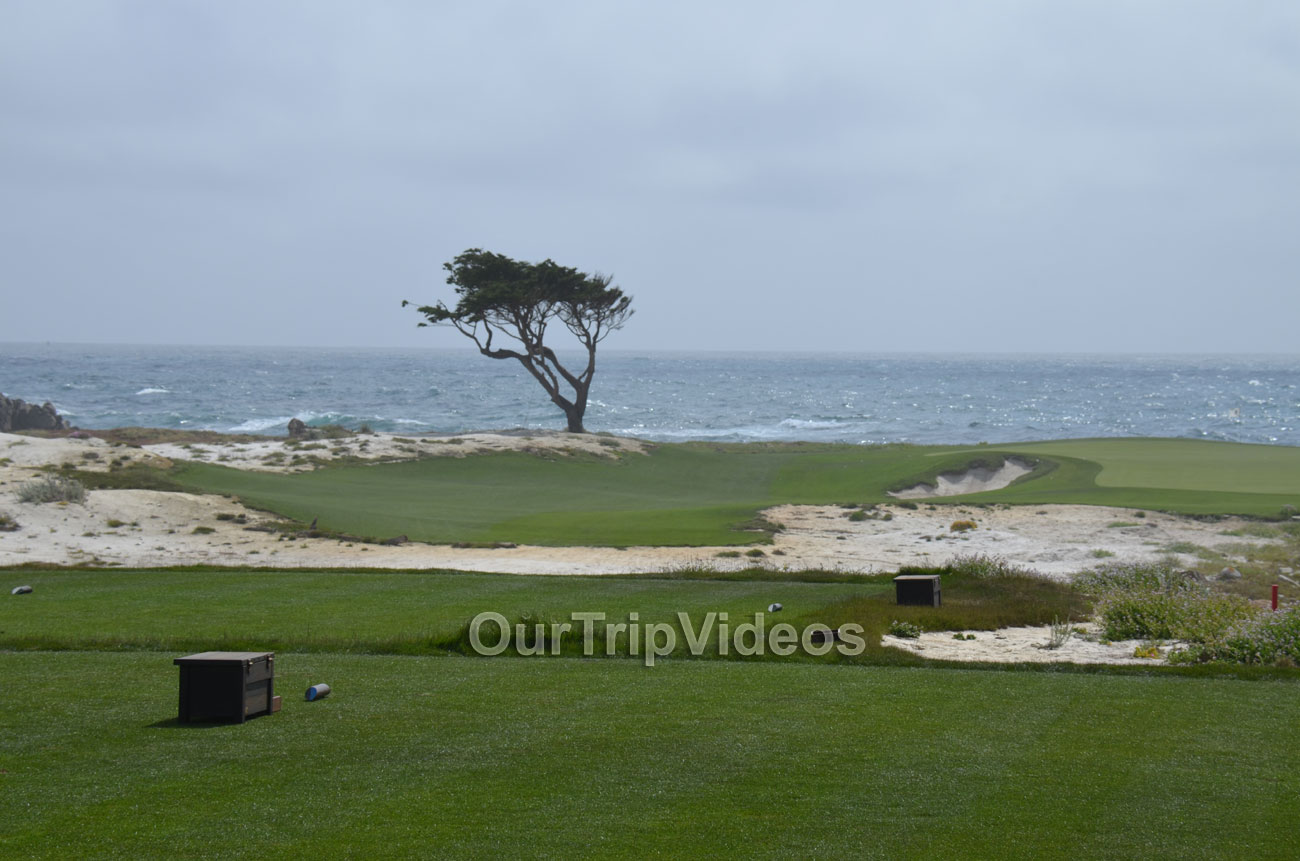 17-Mile Drive, Pebble Beach, CA, USA - Picture 40 of 50