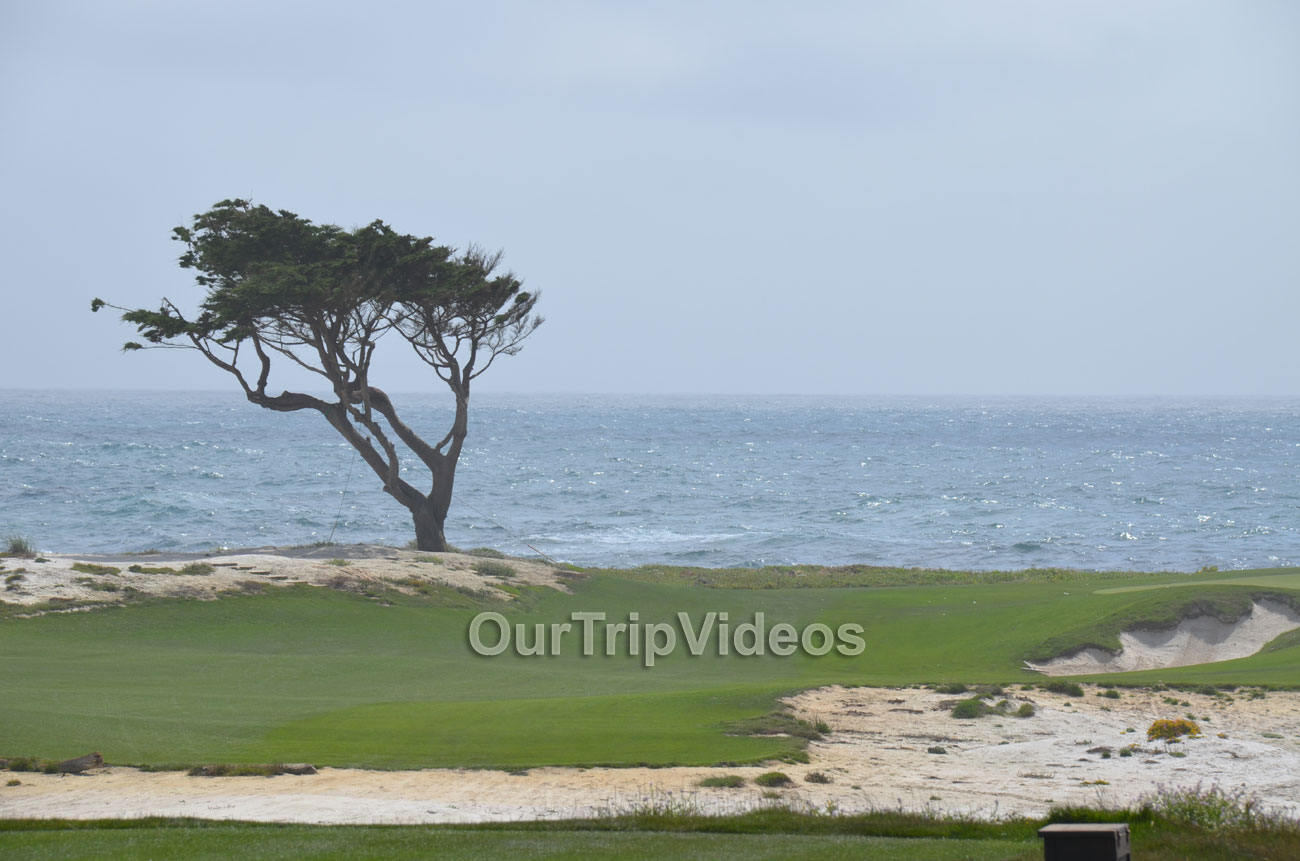 17-Mile Drive, Pebble Beach, CA, USA - Picture 41 of 50