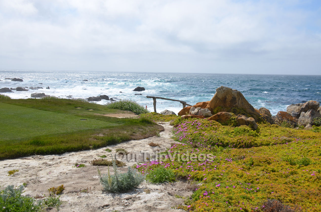 17-Mile Drive, Pebble Beach, CA, USA - Picture 42 of 50