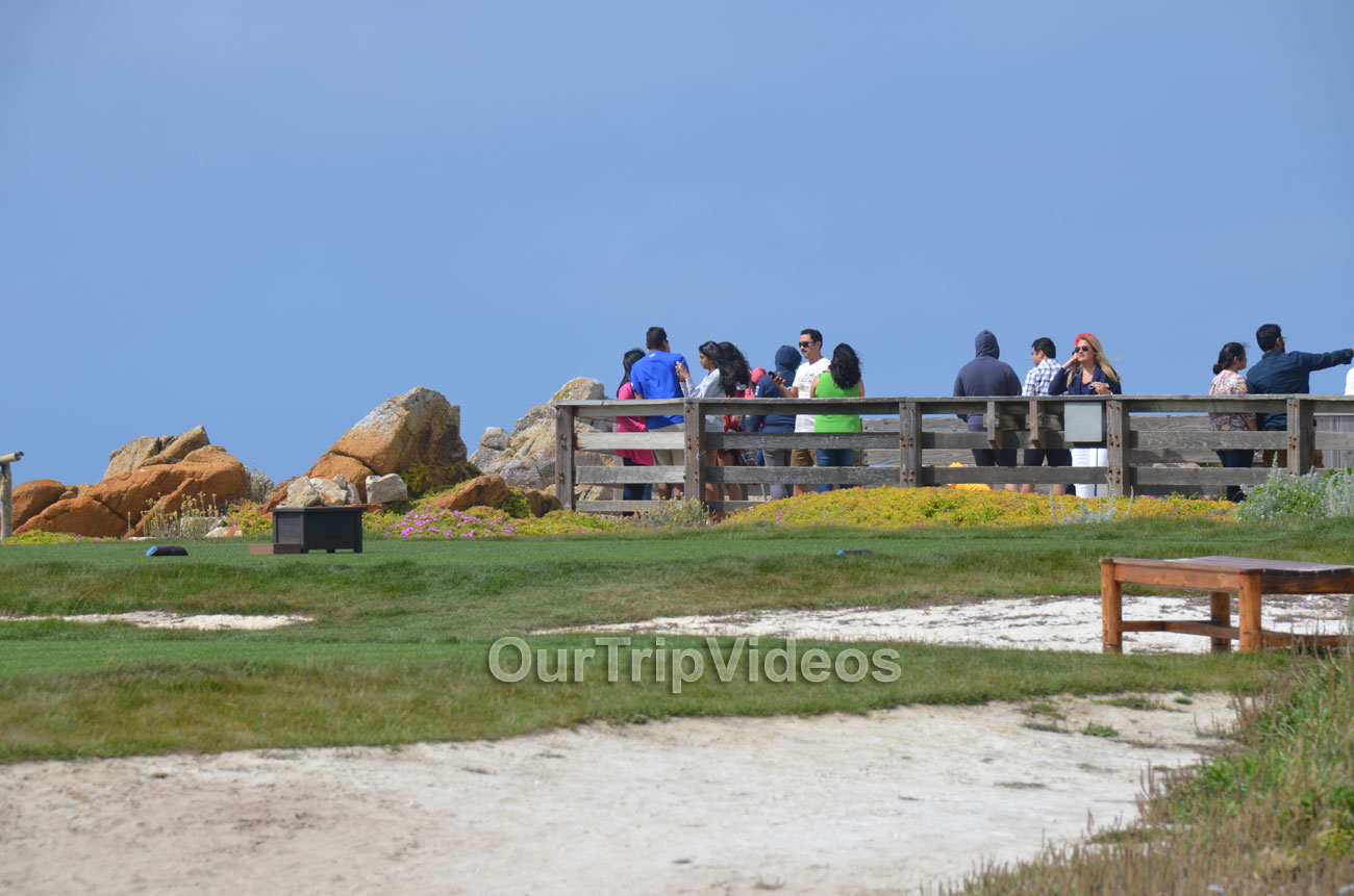 17-Mile Drive, Pebble Beach, CA, USA - Picture 45 of 50