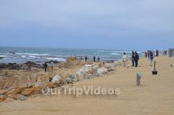 17-Mile Drive, Pebble Beach, CA, USA - Picture 6