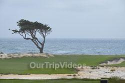 17-Mile Drive, Pebble Beach, CA, USA - Picture 41