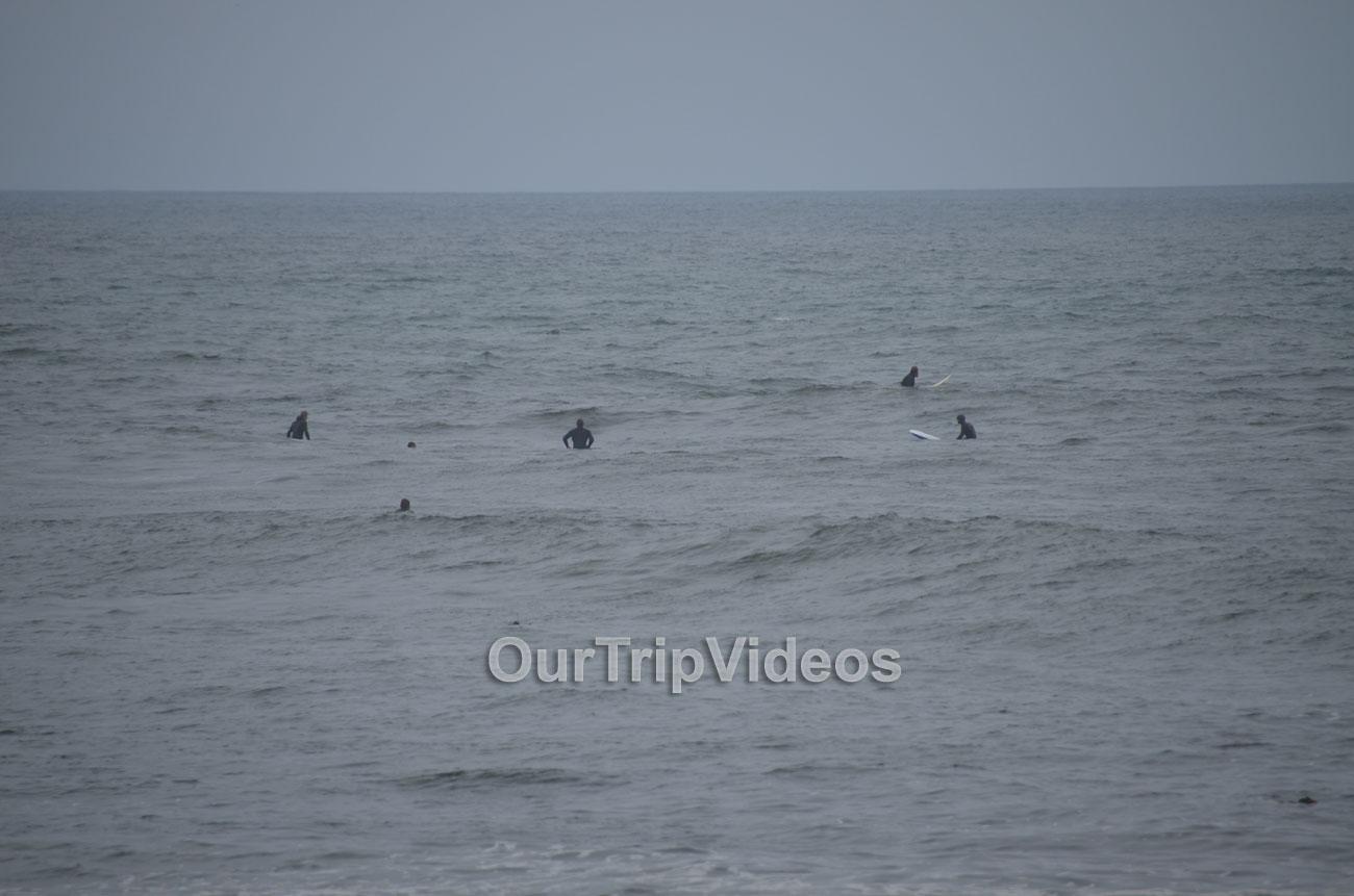 Davenport Landing Beach, Davenport, CA, USA - Picture 8 of 25