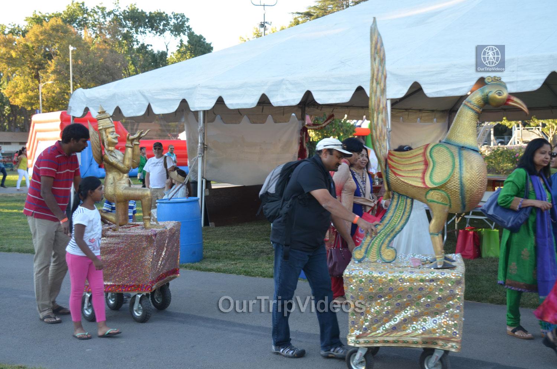 FOG Diwali Mela - Fireworks - Laser Show, Pleasanton, CA, USA - Picture 9 of 25