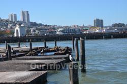 SF Fleet Week - Air Show(Fishermans Wharf), San Francisco, CA, USA - Picture 2