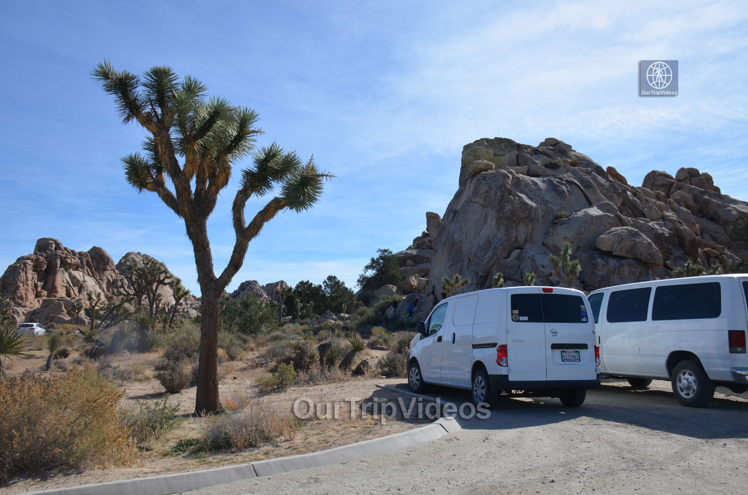 Joshua Tree National Park, Joshua Tree, CA, USA - Picture 24 of 25