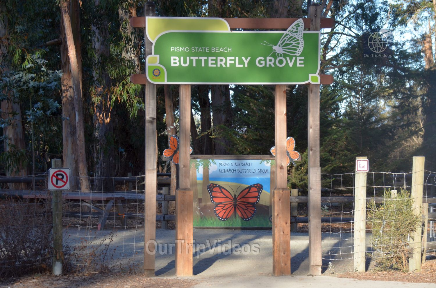 Monarch Butterfly Grove, Pismo Beach, CA, USA - Picture 3 of 25