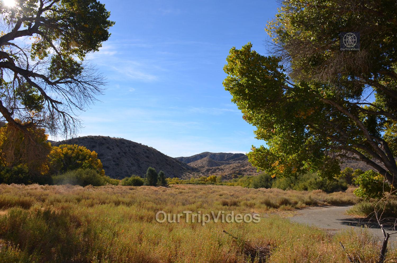 Big Morongo Canyon Preserve, Morongo Valley, CA, USA - Picture 15 of 25