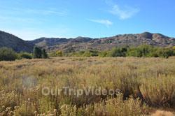 Big Morongo Canyon Preserve, Morongo Valley, CA, USA - Picture 18