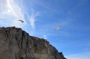 Morro Rock Beach, Morro Bay, CA, USA - Picture 24