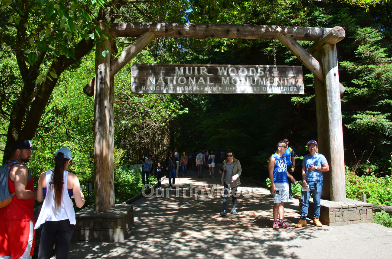 Muir Woods National Monument, Mill Valley, CA, USA - Picture 6 of 25