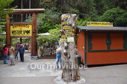 Pictures of The Mystery Spot, Santa Cruz, CA, USA