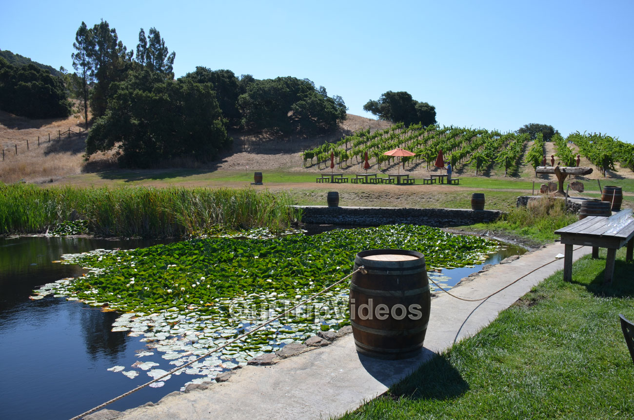 Napa and Sonoma Wine Country Tour, Napa, CA, USA - Picture 7 of 25