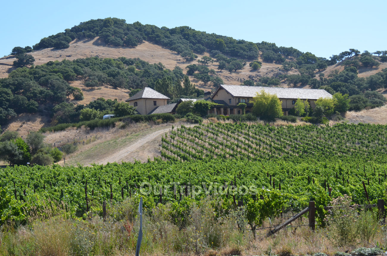 Napa and Sonoma Wine Country Tour, Napa, CA, USA - Picture 11 of 25