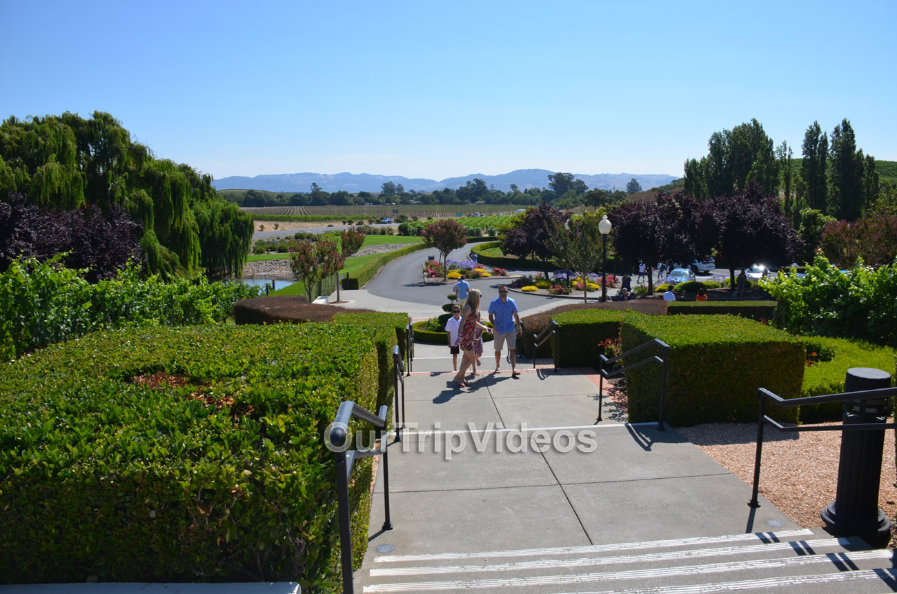 Napa and Sonoma Wine Country Tour, Napa, CA, USA - Picture 14 of 25