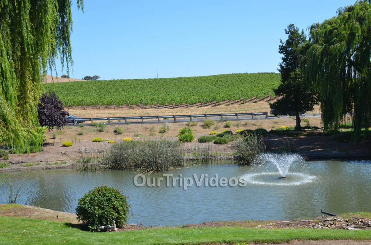 Napa and Sonoma Wine Country Tour, Napa, CA, USA - Picture 19 of 25