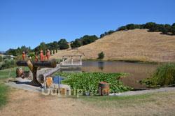 Napa and Sonoma Wine Country Tour, Napa, CA, USA - Picture 6