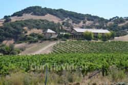 Napa and Sonoma Wine Country Tour, Napa, CA, USA - Picture 11