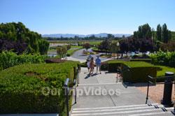 Napa and Sonoma Wine Country Tour, Napa, CA, USA - Picture 14