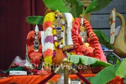 Karthika Masa Vaibhavotsavam (Pancha Kalyanams), Fremont, CA, USA - Picture 3