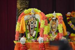Karthika Masa Vaibhavotsavam (Pancha Kalyanams), Fremont, CA, USA - Picture 9
