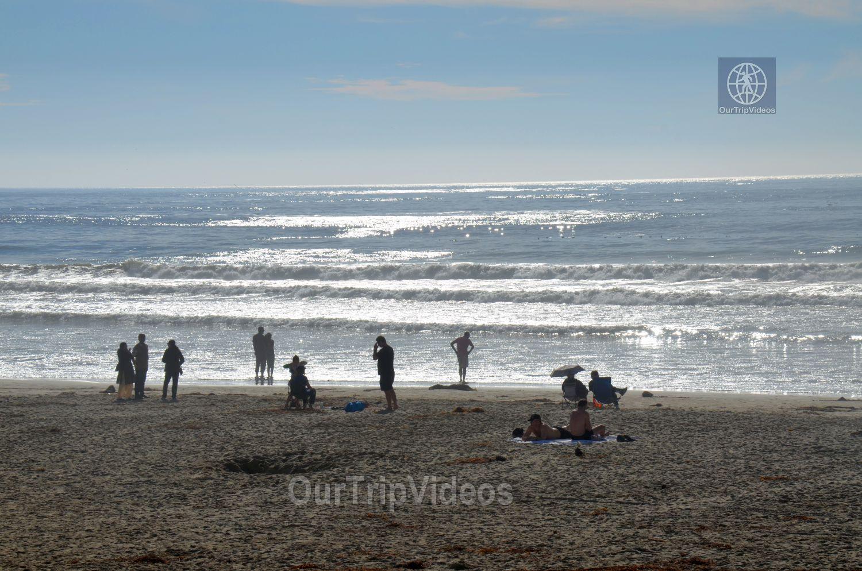 Pismo Beach, CA, USA - Picture 22 of 25