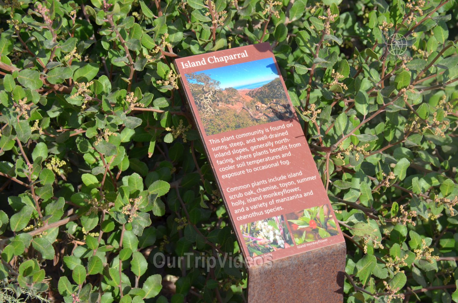 The Robert JL Visitor Center and Harbor cove beach, Ventura, CA, USA - Picture 10 of 25