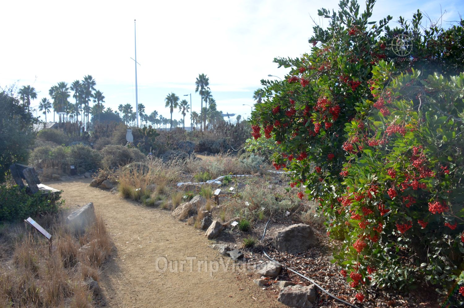 The Robert JL Visitor Center and Harbor cove beach, Ventura, CA, USA - Picture 12 of 25