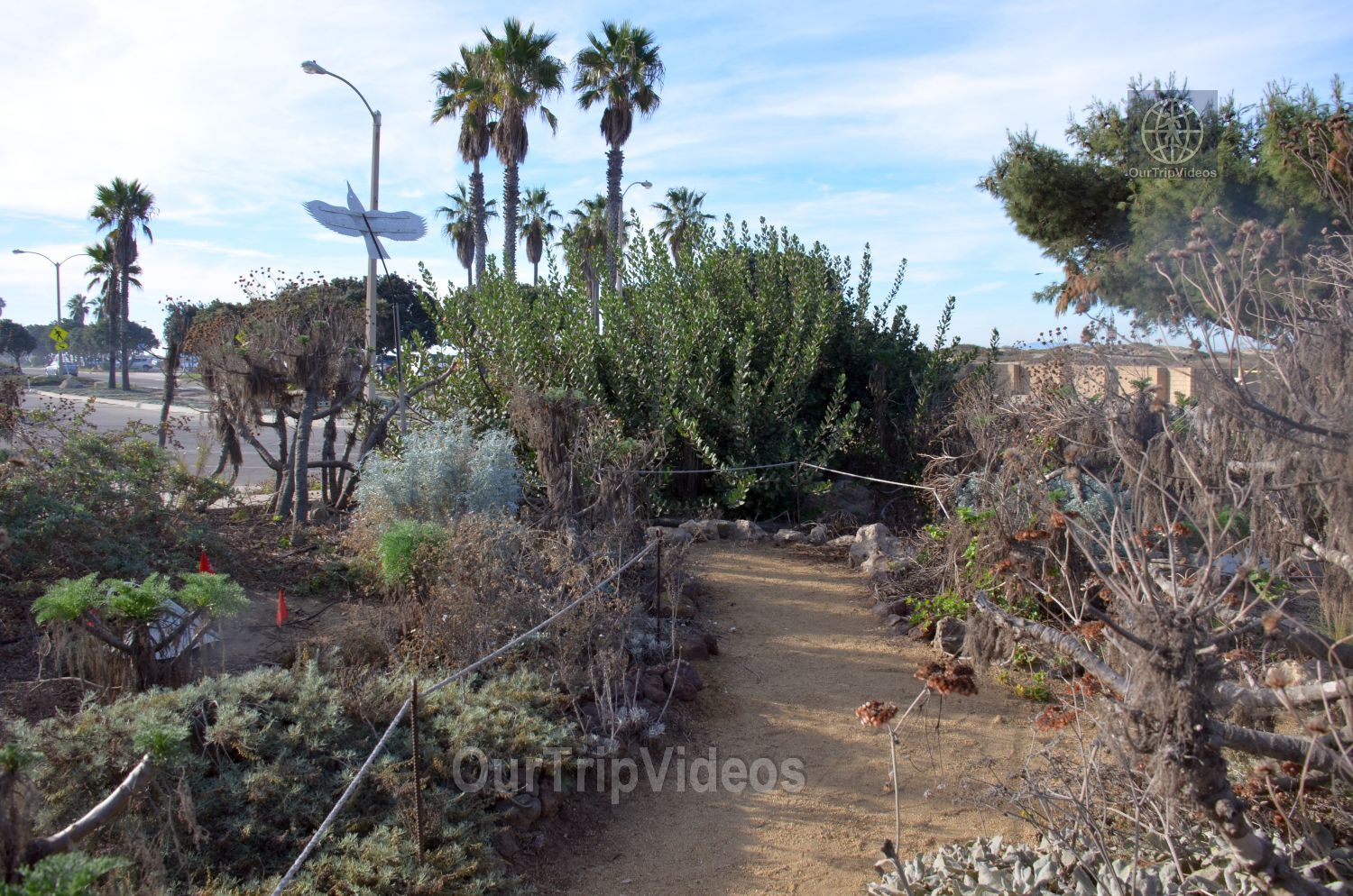 The Robert JL Visitor Center and Harbor cove beach, Ventura, CA, USA - Picture 15 of 25