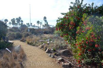 The Robert JL Visitor Center and Harbor cove beach, Ventura, CA, USA - Picture 12