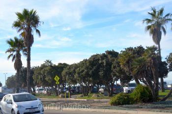 The Robert JL Visitor Center and Harbor cove beach, Ventura, CA, USA - Picture 18
