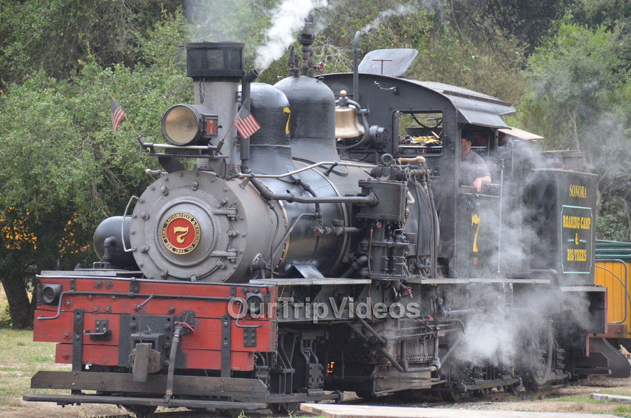 Roaring Camp and Big Trees Railroad, Felton, CA, USA - Picture 8 of 25