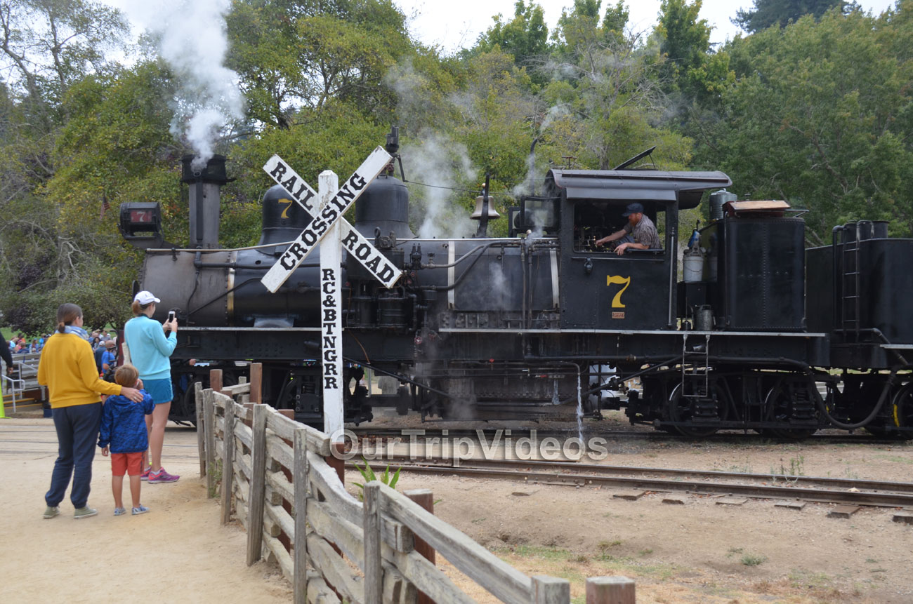 Roaring Camp and Big Trees Railroad, Felton, CA, USA - Picture 9 of 25