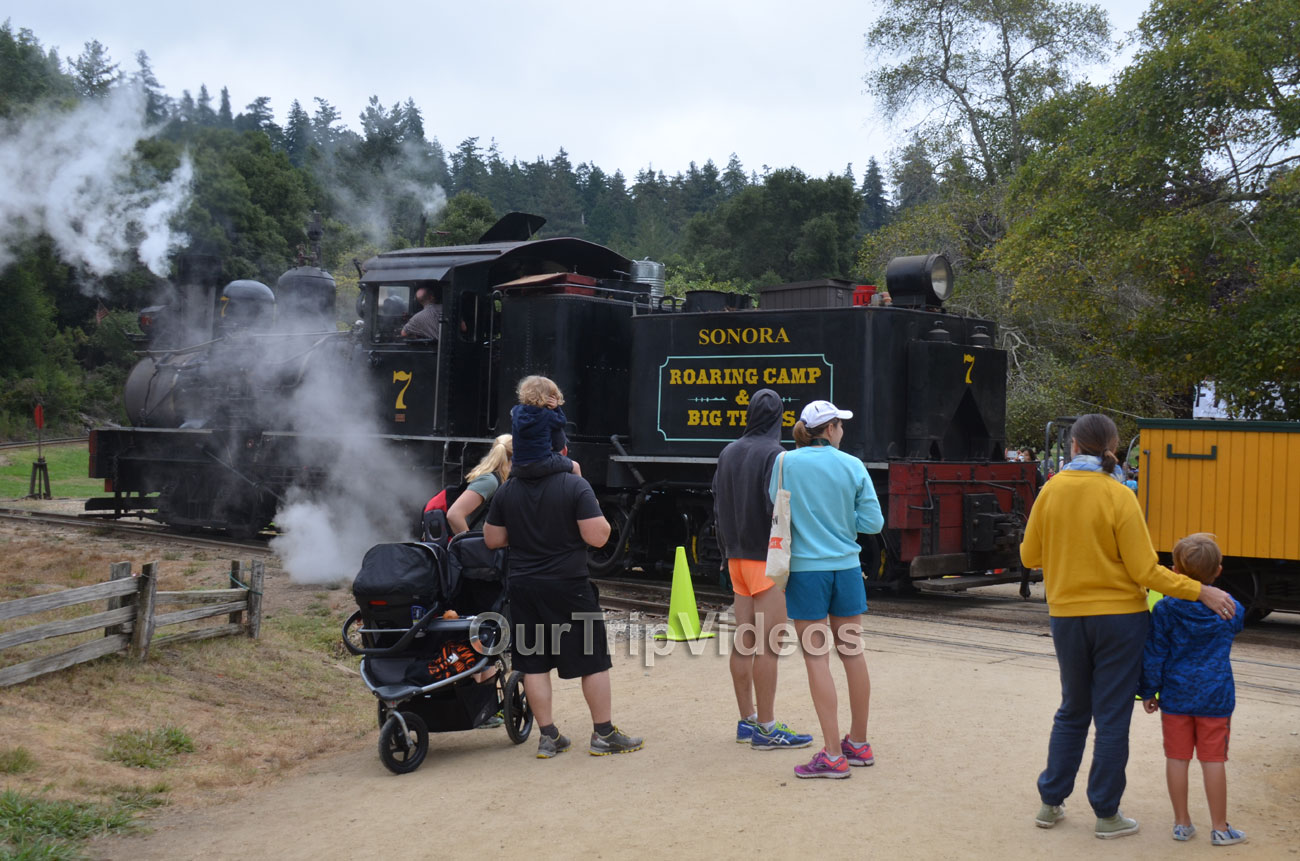 Roaring Camp and Big Trees Railroad, Felton, CA, USA - Picture 10 of 25