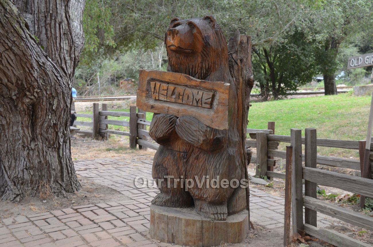 Roaring Camp and Big Trees Railroad, Felton, CA, USA - Picture 18 of 25