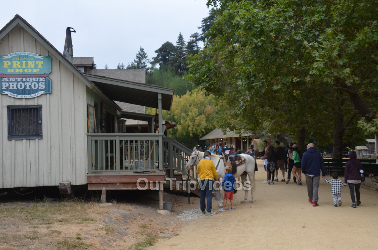 Roaring Camp and Big Trees Railroad, Felton, CA, USA - Picture 20 of 25