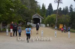 Roaring Camp and Big Trees Railroad, Felton, CA, USA - Picture 2