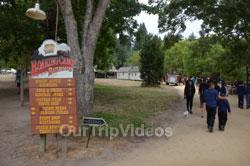 Roaring Camp and Big Trees Railroad, Felton, CA, USA - Picture 17