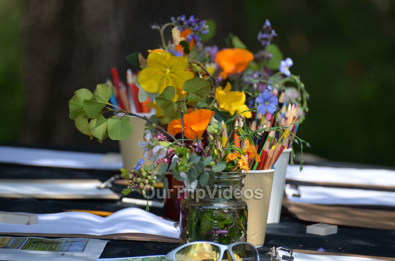 Sunol Wildflower Festival, Sunol, CA, USA - Picture 12 of 25